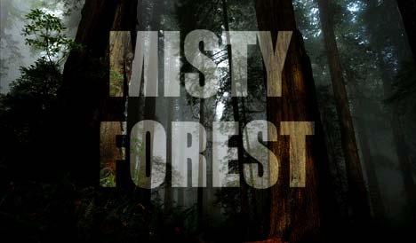 misty_01