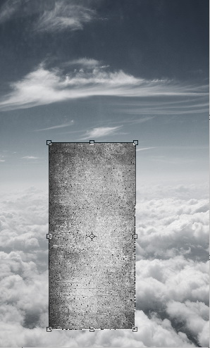 image-03