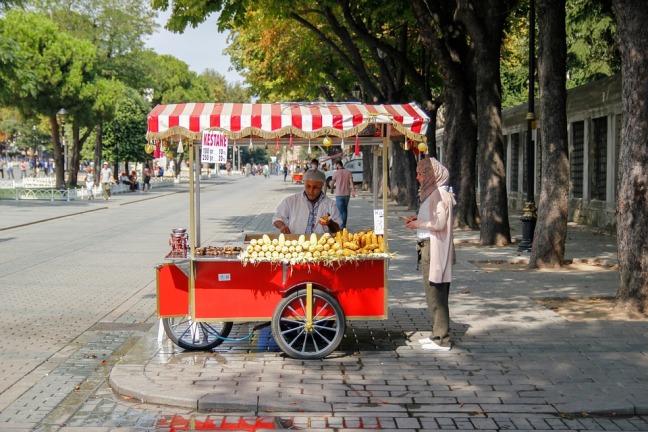 istanbul-3192920_960_720.jpg